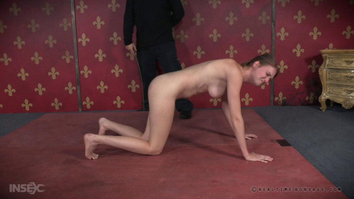 Insatiable Ass Part 3 BDSM
