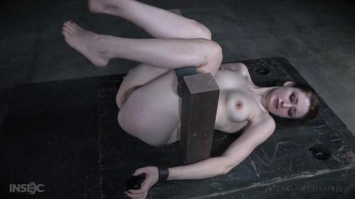 Cheater Cheater Pussy Eater Bdsm BDSM