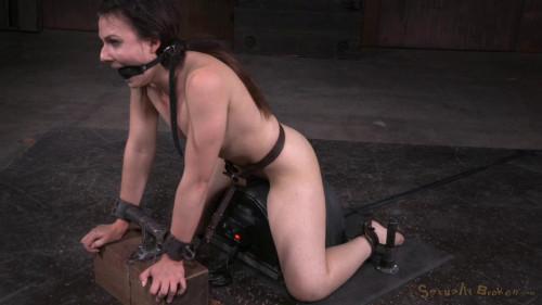 Amy Faye, Matt Williams and Maestro BDSM