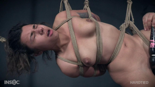 Minnow Monroe Piggy In a Hogtie