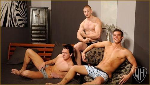 Roman, Sylvester and Adam