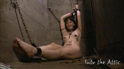 Amateurs Hard Bondage scene 32