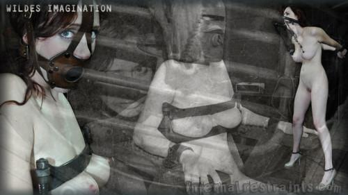 Wildes Imagination
