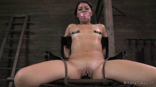 HardTied Mia Gold X Marks The Spot BDSM