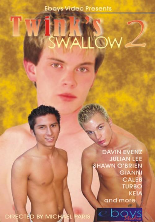Twinks Swallow vol.2