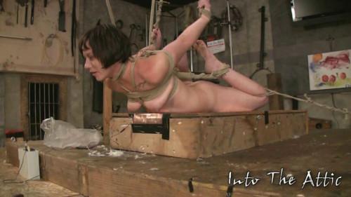 Ianthe Tied hard