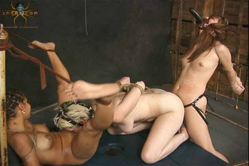 School of Hard Knots Tyler, BJ, Charisma - InSex