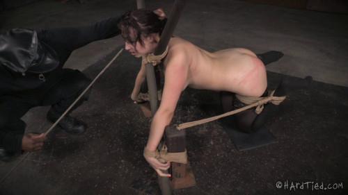 Breaking Bratty (Piper Rage) Hardtied BDSM