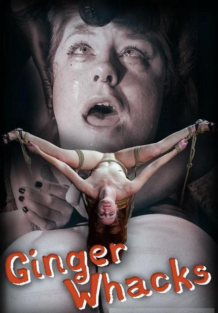 Ginger Whacks