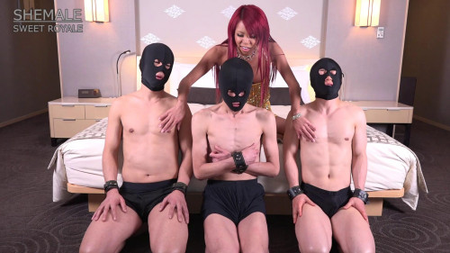 Shemale Sweet Royale – Sweet Shemale Angel The Miran Gold Transsexual