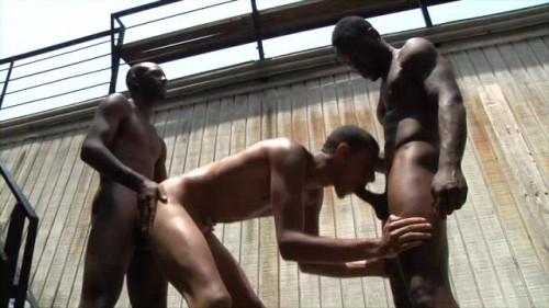 Black In Nature 4 Ebony