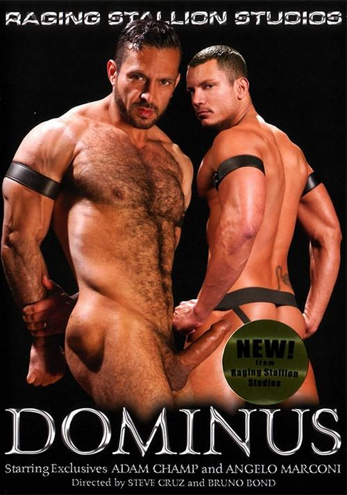 Dominus Gay Unusual