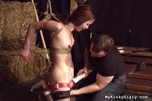 Stupid Slut BDSM