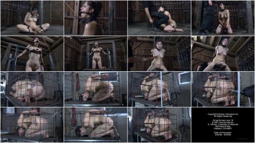 Worthless Cunt Part 3 – BDSM, Humiliation, Torture