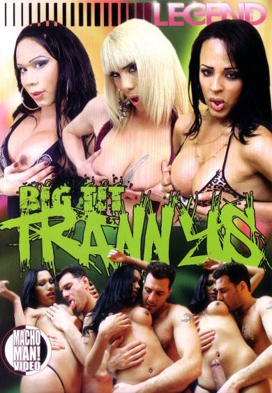 Big Tit Trannies