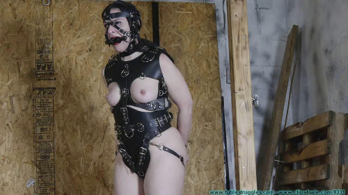 He Wanted a Pony Girl for Christmas BDSM Latex