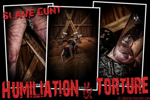 Slave Cunt - Humiliation and Torture
