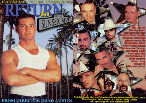 Return To Sunsex Gay Retro