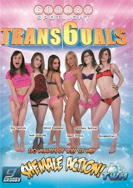 Trans6uals - part 1