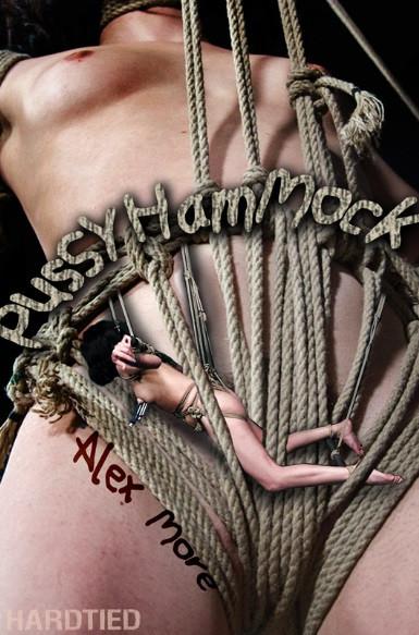 HardTied - Alex More - Pussy Hammock