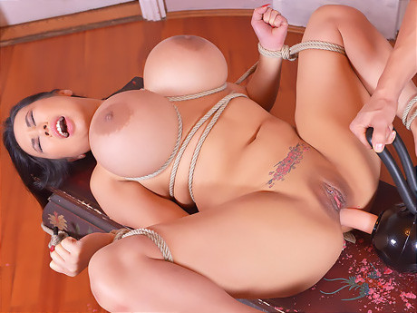 Thick buttocks of the busty Japanese of Tigerr Benson bang the anal unit