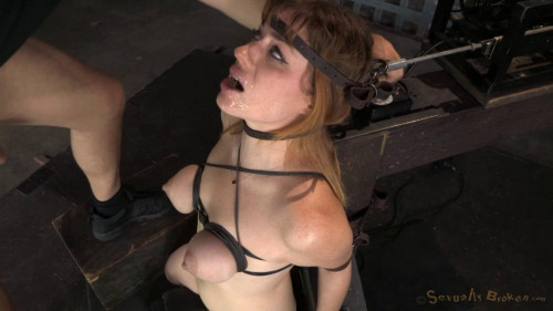 Jessica Ryan, Matt Williams, Jack Hammer BDSM