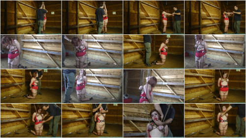 Barnyard Bondage for Riley Her Ordeal Continues pt. 2