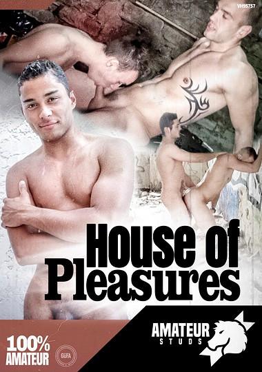 Amateur Studs House Of Pleasures