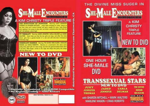 She-Male Encounters 3