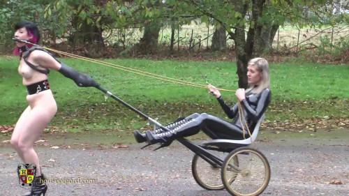 Pony Treadmill Coach Upgrade