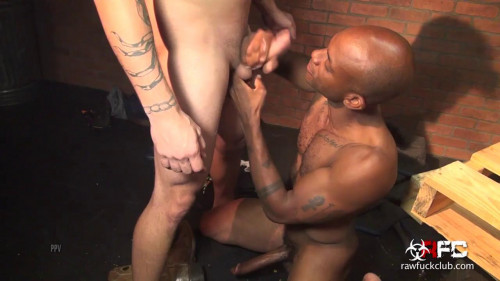 Bachelor Party Breeding - 720p Gay Clips