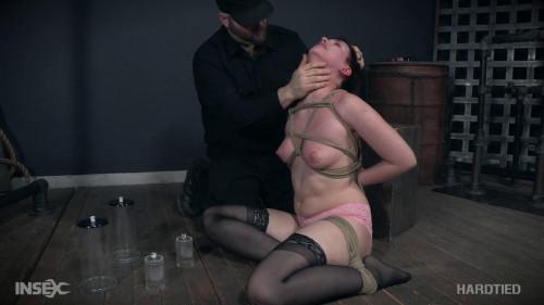 Amazing Rabbit Hole BDSM