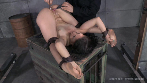 IR - A Freshly Chained - Mandy Muse, OT