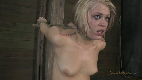 Sybian Bound, Zippered and Throated-rough bdsm porn BDSM