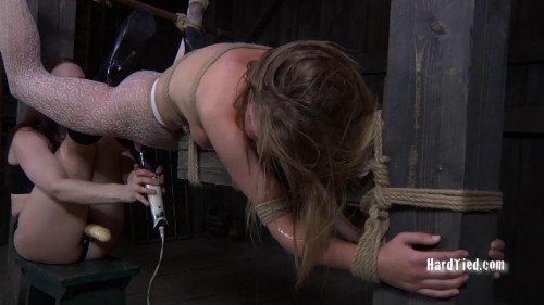 Caught in the Web Part 2 BDSM