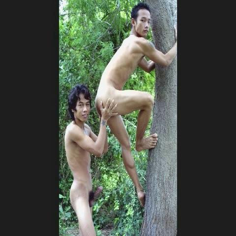 Ripe, Round and Ready Asian Gays