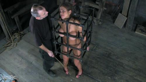 Butt Slut BDSM