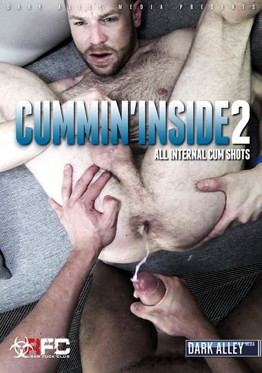 Cummin Inside - part 2
