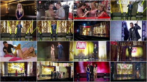 AVN Awards Show 2017
