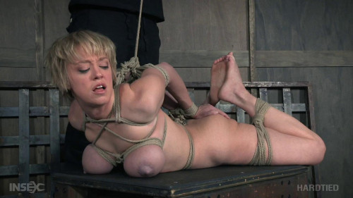 Rope Humiliation For Busty Slave Dee Williams