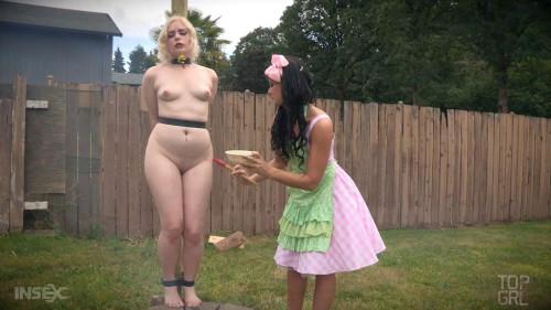 A Lady's Guide to Pork Roast BDSM