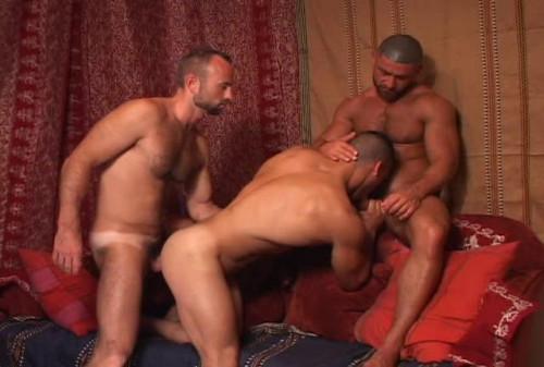 Arabian Sex Collection