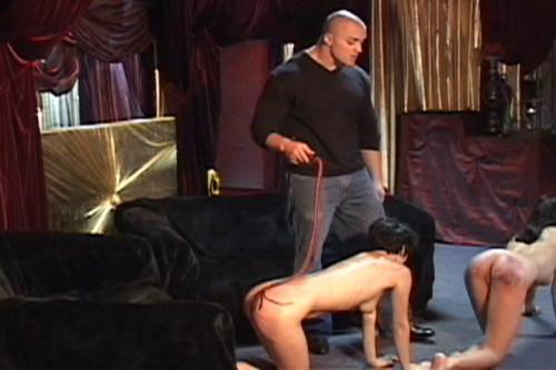 Discipline in Russia 36 Part No. 2