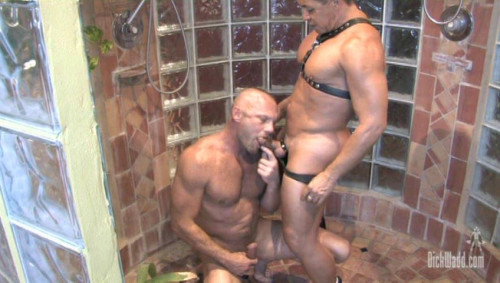 Wet Muscle Pigs (2012)