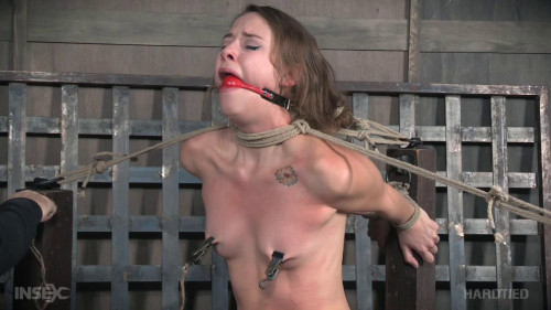 Tickle Whipped-hardcore bdsm