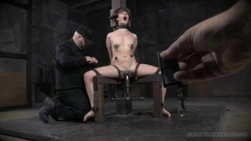 Bondage Monkey Part 3 BDSM