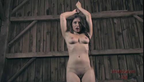 Bondage Pig Part Three - Sister Dee