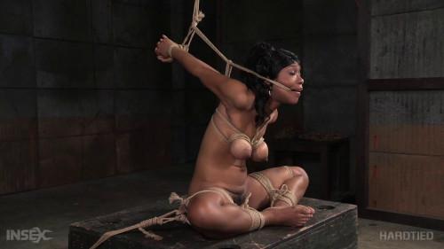 HD Bdsm Sex Videos Chocolate Eclair BDSM