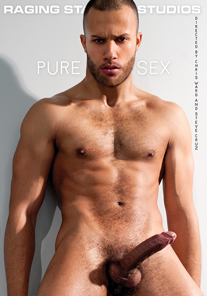 Pure Sex Gay Movies