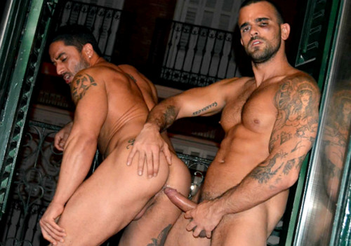 StagHomme - Cruising from the Balcony (Damien Crosse & Robin Sanchez)